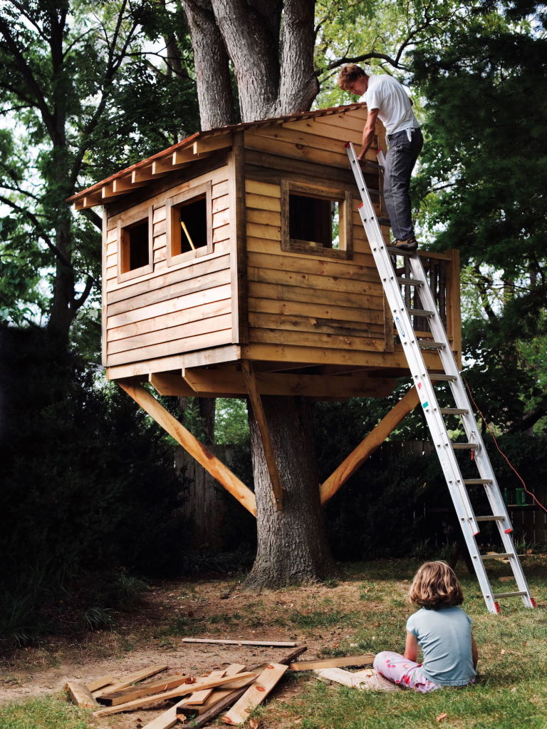 A Tree House in the Backyard