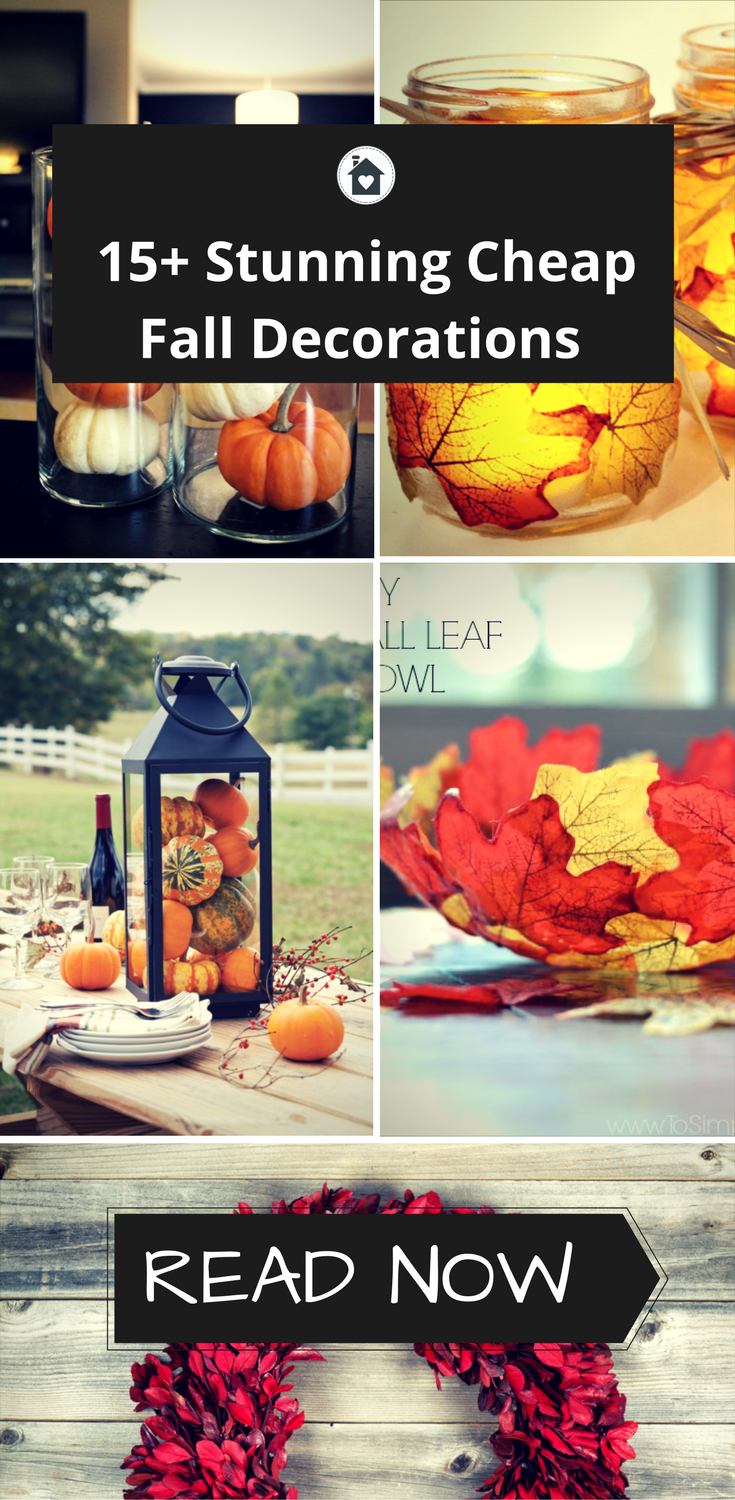 15+ Cheap Fall Decorations That I Absolutely Love - tinyspacesliving.com