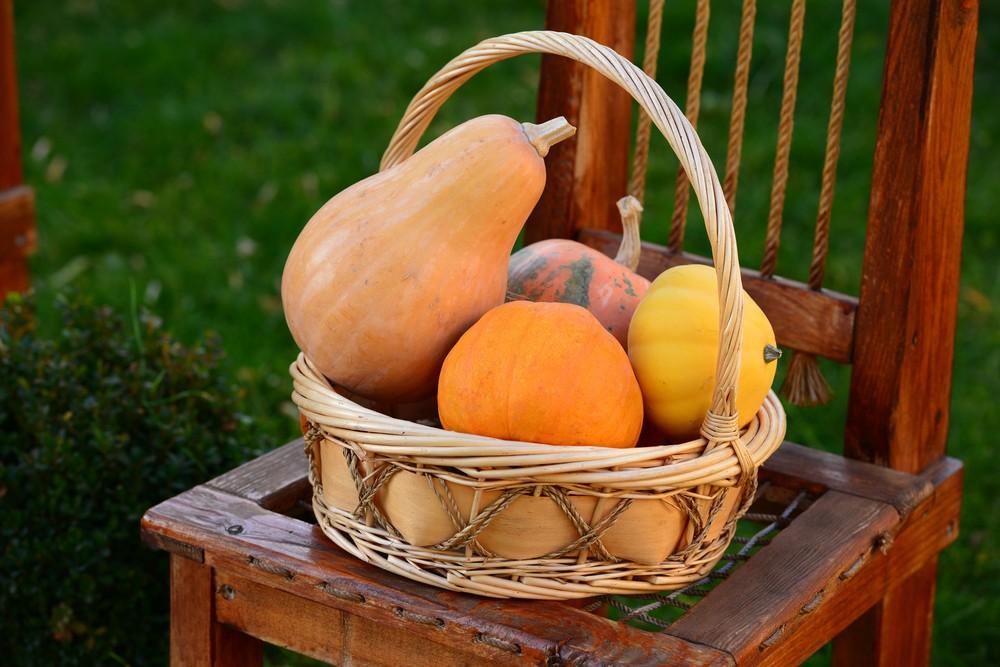 Pumpkin Chair Arrangement