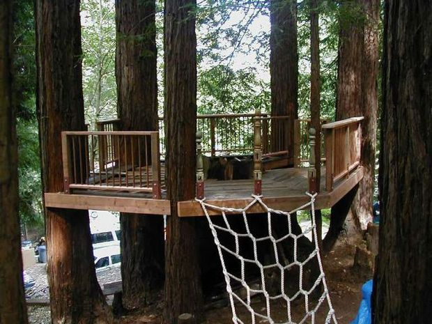 Spectacular Tree House Plans