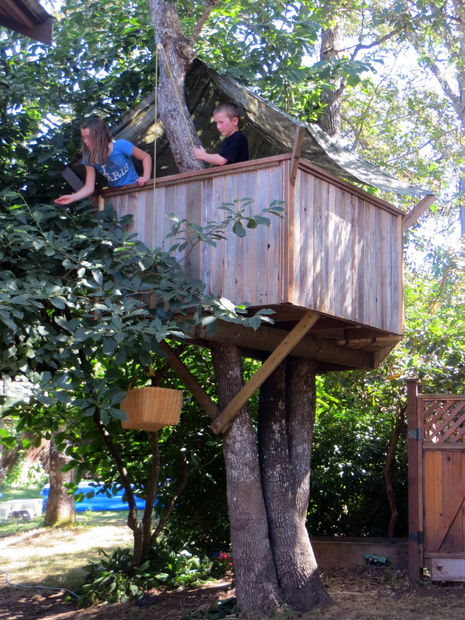 The Cheap Tree House Plan
