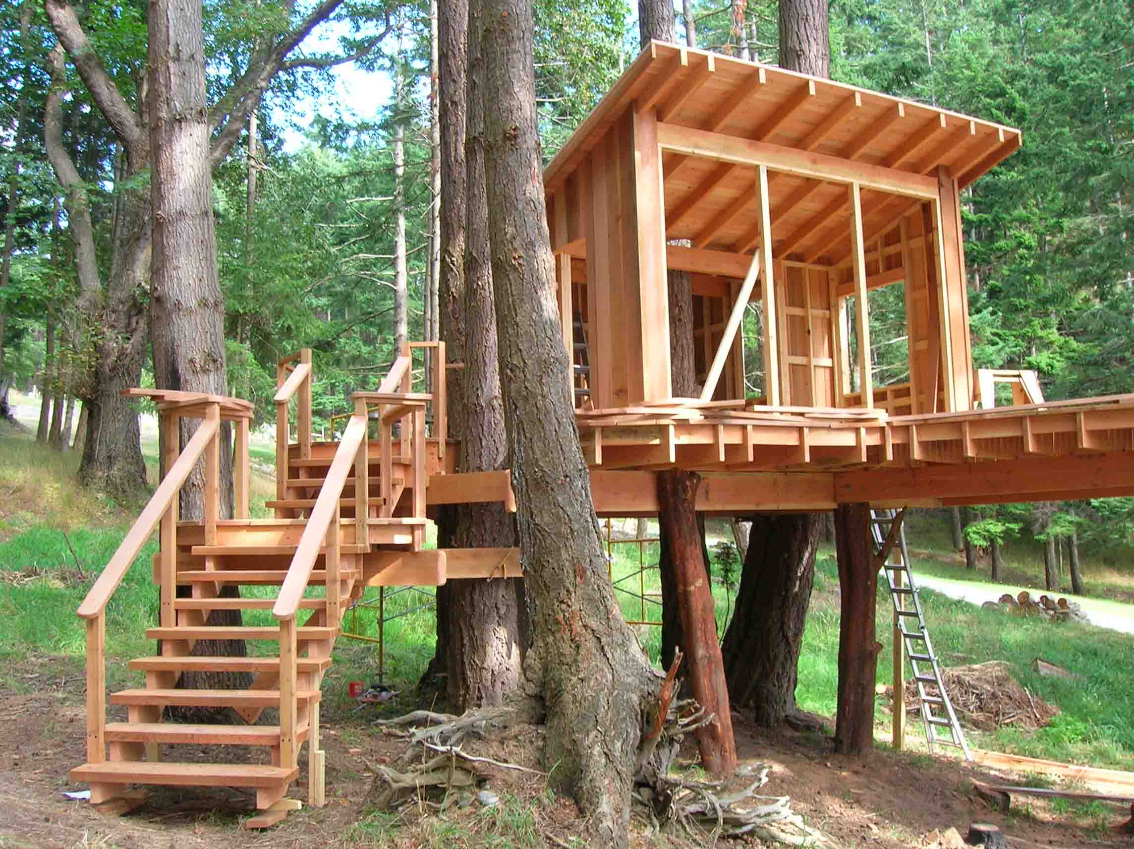 The Little Treehouse