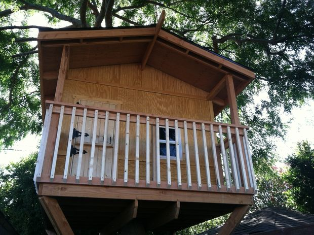 The Medium-Sized Tree House