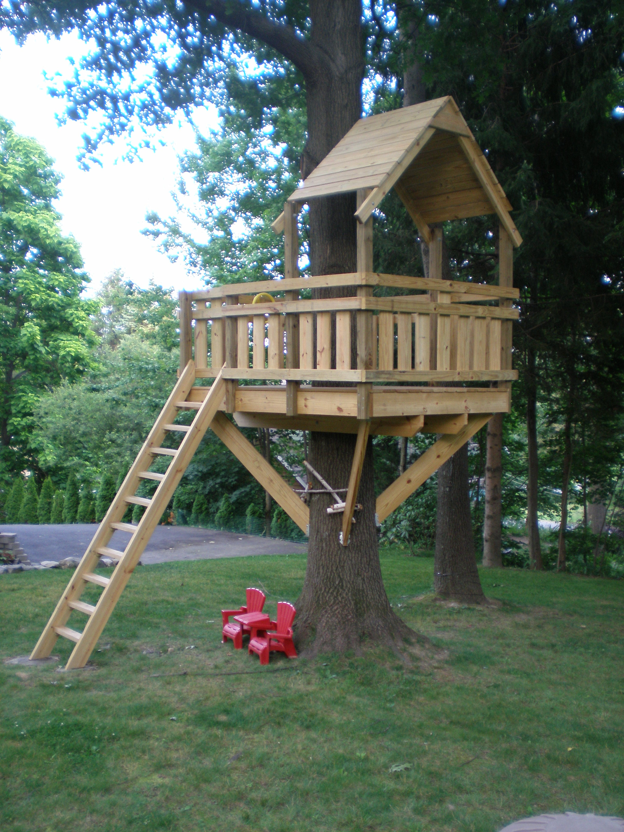 The Tree Fort for Kids