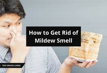 A Complete Guide on How to Get Rid of Mildew Smell