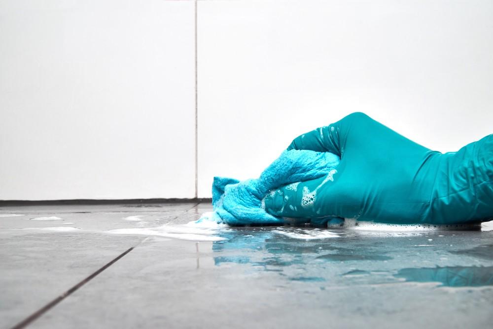 get rid of mildew smell - Scrub